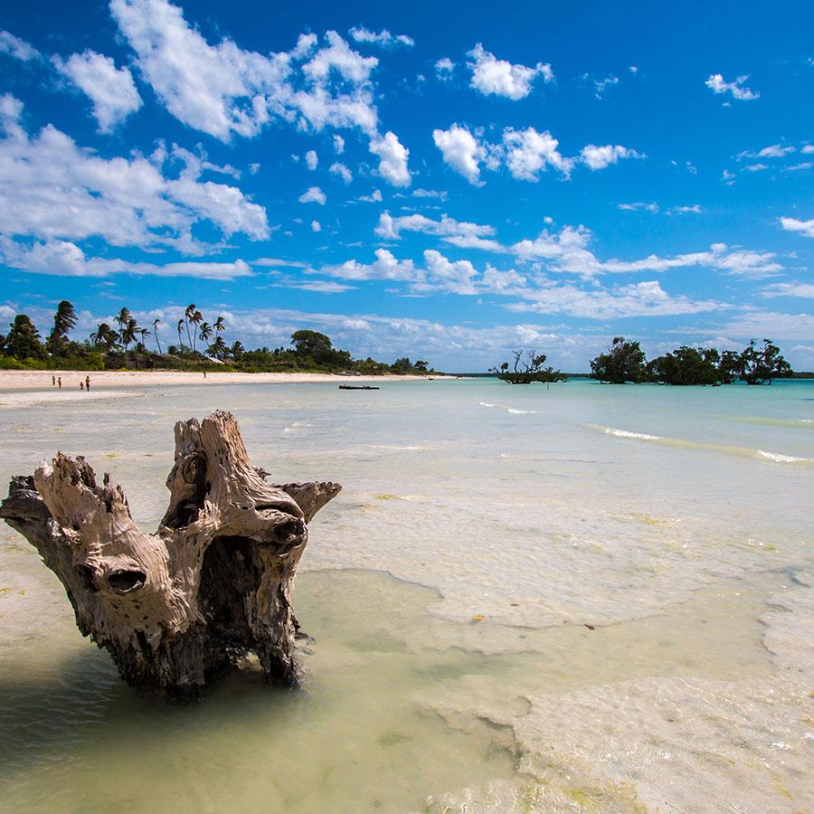 Mozambique Quirimbas National Park